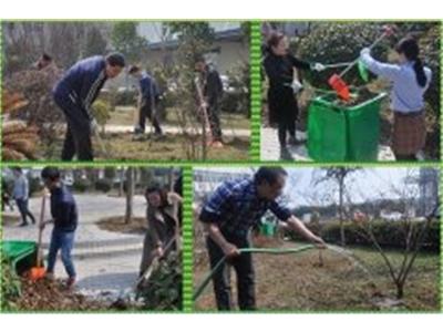 20180316植树节活动